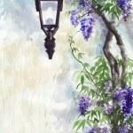 Lilac lantern — Stock Photo #18154325