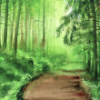 Green misty forest — Stock Photo