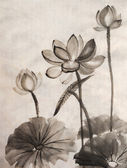 Akvarell av lotusblomma — Stockfoto