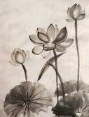 Akwarela malarstwo kwiat lotosu — Zdjęcie stockowe