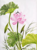 Watercolor painting of lotus flower — 图库照片