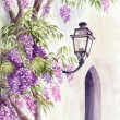 Stock Photo: Wisteriand lantern