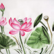 Watercolor painting of pink lotus — Stock Photo #26830835