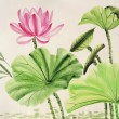 Stock Photo: Watercolor painting of pink lotus flower