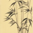 watercolor painting of bamboo — Stock Photo