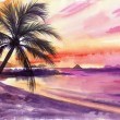 Palm beach sunset — Stock Photo