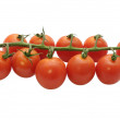 Branch of cherry tomatoes — Stock Photo