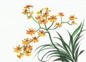 žluté orchideje — Stock fotografie