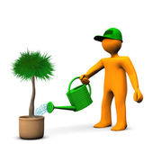 Gardener Watering Palm — Stock Photo
