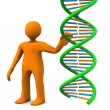Manikin DNA — Stock Photo