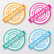 100 Percent Guarantee Paper Labels — Stock Vector #24607871