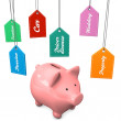 Piggy Bank Expensive Desires — Stock Photo