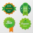 Four Biofood Labels With Text — Stock Vector