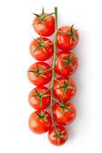 枝にチェリー トマト — ストック写真