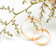 Gold wedding rings and branch flowers — Stock Photo #14208734