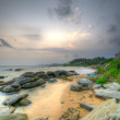 Stock Photo: Coast of the Indian ocean