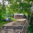 Poor housing in the jungle — Photo