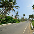 Foto Stock: Road in tropics