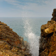 Blowhole - Stock Photo