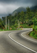 Road to the mountains. Fog above forest — Stock Photo