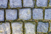 Cobbled road closeup — Stock Photo