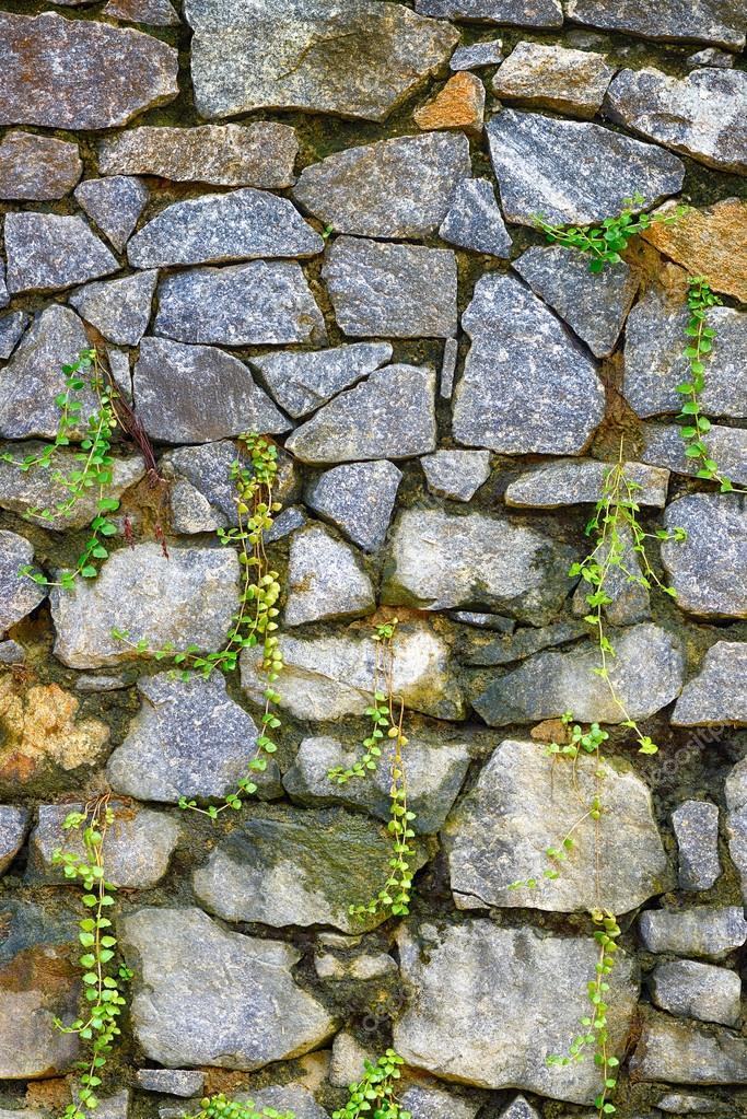 Pared de piedra natural y germinado de pasto foto de stock 19272795 depositphotos - Pared de piedra natural ...