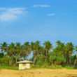 Little house on the beach among the palm trees — Stock Photo