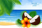 Vector background of paradise island — Stock Vector
