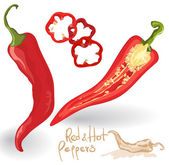 Vector red hot chili peppers on white. — Stock Vector
