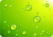 Clear green water drops — Stock Vector