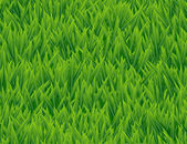 Fresh grass seamless vector pattern. — Stock Vector