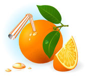 Fresh ripe orange drink. — Stock Vector