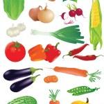 Vector set of raw vegetables. — Stock Vector #45160971