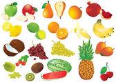 Conjunto gigante de frutas vector. — Vector de stock