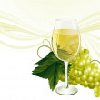 The glass of white wine and grape. — Stock Vector #45172289