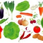 Vector set of raw vegetables. — Stock Vector #45173029