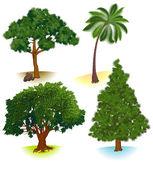 Vector trees. — Stock Vector