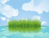 Grass reflected in water. — Stock Vector