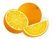 Orange. Vector. — Stock Vector