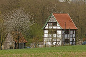 Half-timbered house with cherry blossom in Germany — Stock Photo