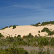 Piscinas, dune landscape at the Costa Verde, Southwest Sardinia, Italy, Europe — Stock Photo