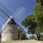 Постер, плакат: Windmill near Ramatuelle Windmill Jean Baptiste Paillas 18th century Cote dAzur Provence Southern France