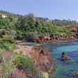 Massif de lEsterel, Esterel masif with porphyry rocks, Cote dAzur, Southern France, Europe — Stock Photo