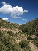 River Rio Cannas, Southeast Sardinia, Italy, Europe — Stock Photo