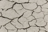 Dryness, dry ground in Corsica, France, Europe (Climate change, global warning) — Stock Photo