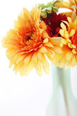 Orange dahlien in einer vase — Stockfoto
