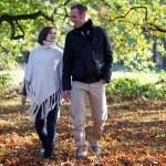Молодая пара, прогуливаясь по лесу — Стоковое фото