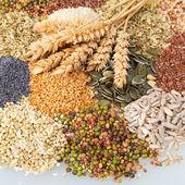 Verscheidenheid van eetbare zaden met oren van tarwe verscheidenheid van eetbare zaden met oren van tarwe — Stockfoto