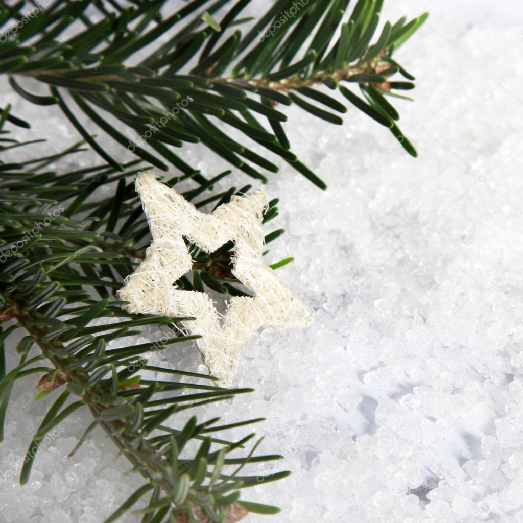 Christmas tree branches with white star ornament and snow — Stock Photo #20077581
