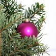 Single Christmas bauble in a tree — Stock Photo